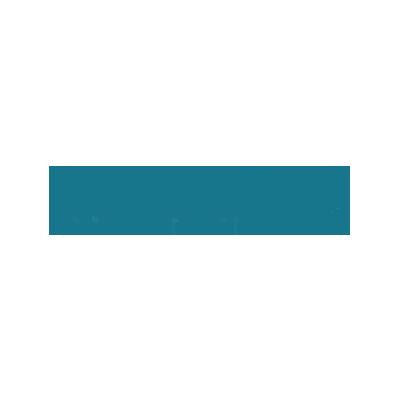 Nemesi Logo